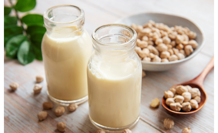 plant-based protein powder for food manufacturers